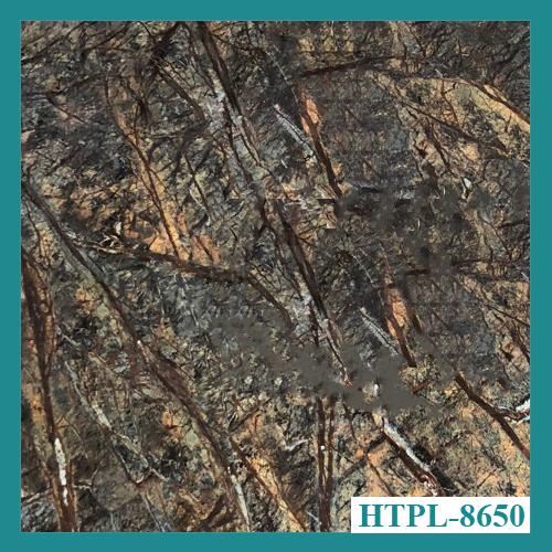 Tấm ốp tường PVC vân đá HTPL-8650